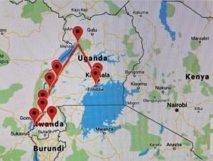 Margaspalvė Afrika